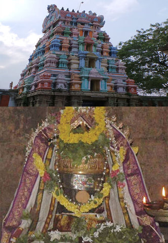 Book online to perform puja in Navakailasa Temple, Anarghyaa.com