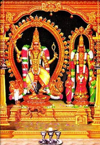 70th Birthday in Thirukadaiyur Temple| Anarghyaa.com | Temple Puja | Bhimaratha Santhi