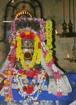 Book online at Anarghyaa.com to perform Puja in Thirupampuram Temple