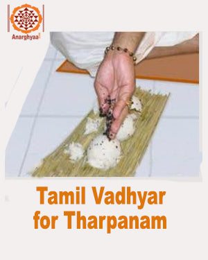 Book online for Tamil Vadhyar / Tamil Vedic Priest for tharpanam every amavasya, anarghyaa.com
