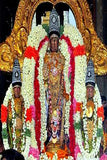 Varadaraja Perumal Temple | Kanchipuram Varadaraja temple |Temple Prasadam| Book online to perform Puja in Temples | Anarghyaa.com