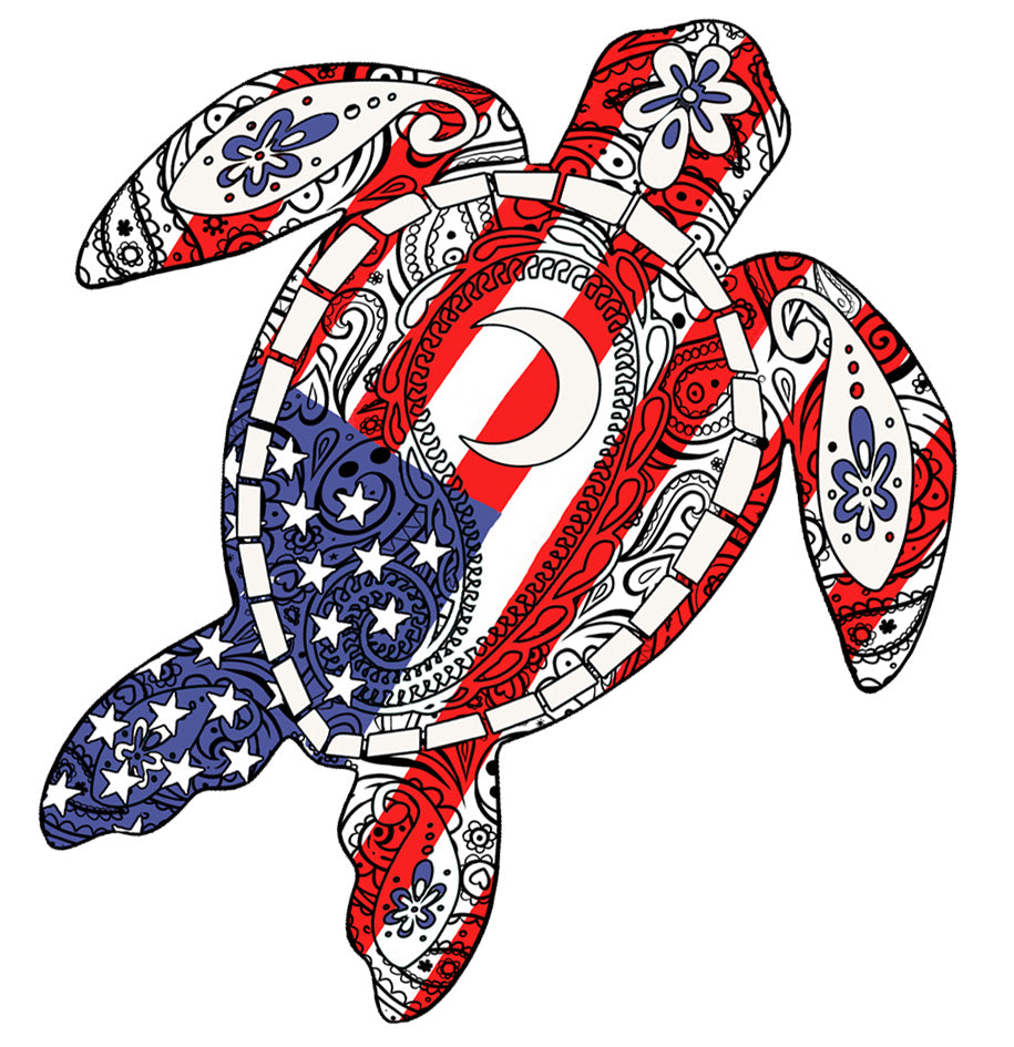 USA Turtle Decal