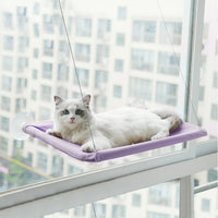 A Snooze Worthy Window Perch for Your Furry Friend