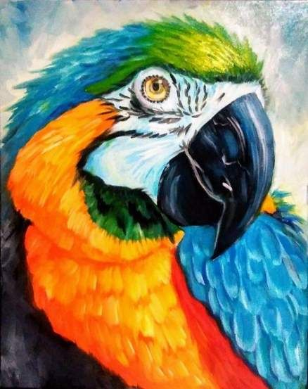 Rainbow Parrot Diamond Painting Kit - MEIISS DIAMOND PAINTING