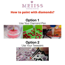 Load image into Gallery viewer, Wolfs Night and Moon Diamond Painting Kit - MEIISS DIAMOND PAINTING
