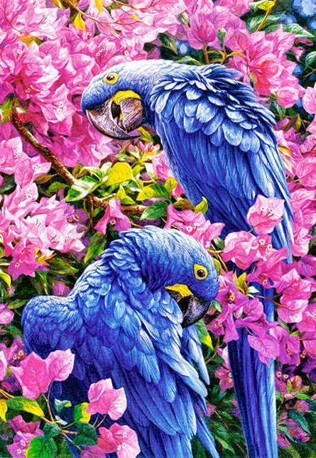 Blue Macaw Parrots Diamond Painting Kit - MEIISS DIAMOND PAINTING