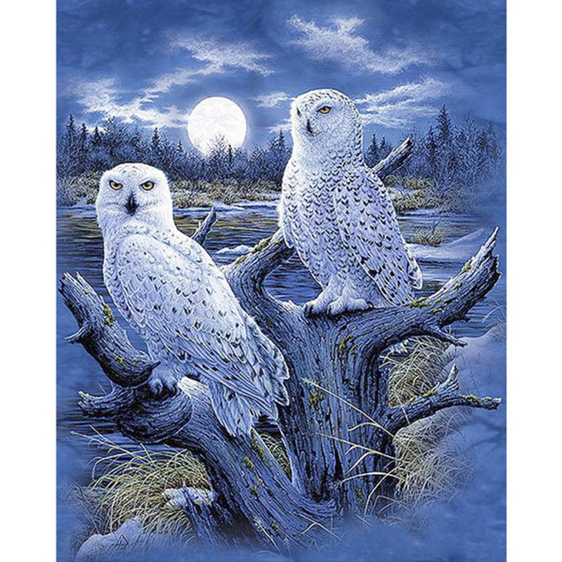 Amazing White Snow Owls Diamond Painting Kit - Paint By Diamonds