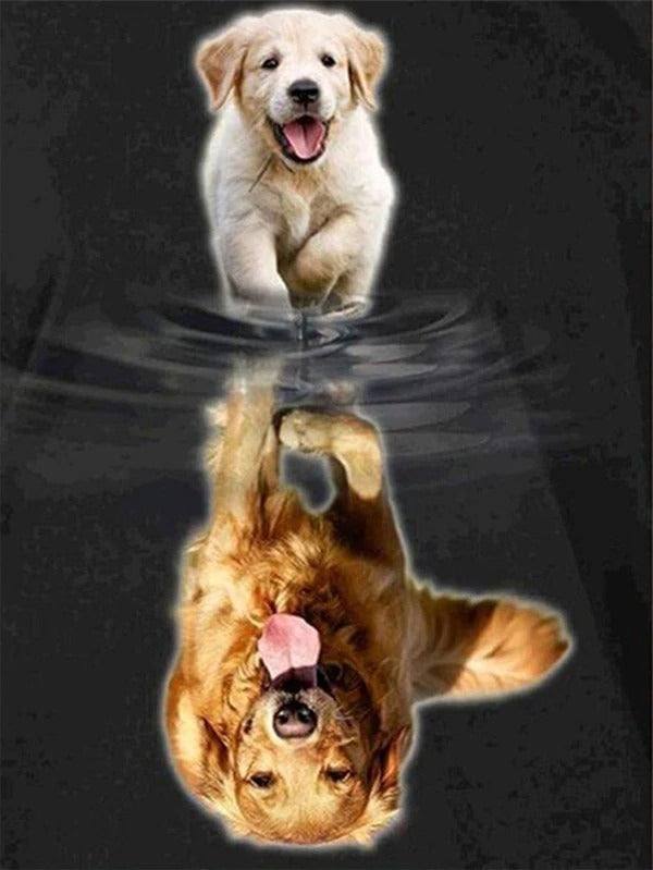 Golden Retriever Puppy Transformation Diamond Painting Kit - Paint By Diamonds