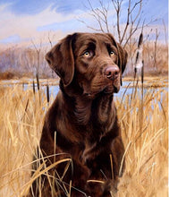 Load image into Gallery viewer, Dog Hunting Diamond Painting Kit - MEIISS DIAMOND PAINTING