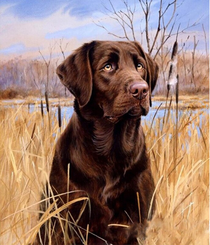 Dog Hunting Diamond Painting Kit - MEIISS DIAMOND PAINTING