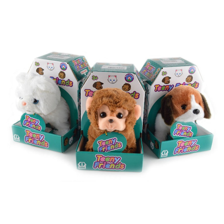 Robot Cat/Dog/Monkey Teeny Friends Bundle - siopashop.ie