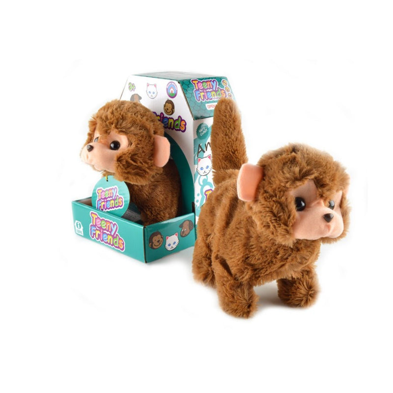 Teeny Friends Bundle - Baby Kitten-Monkey-Puppy
