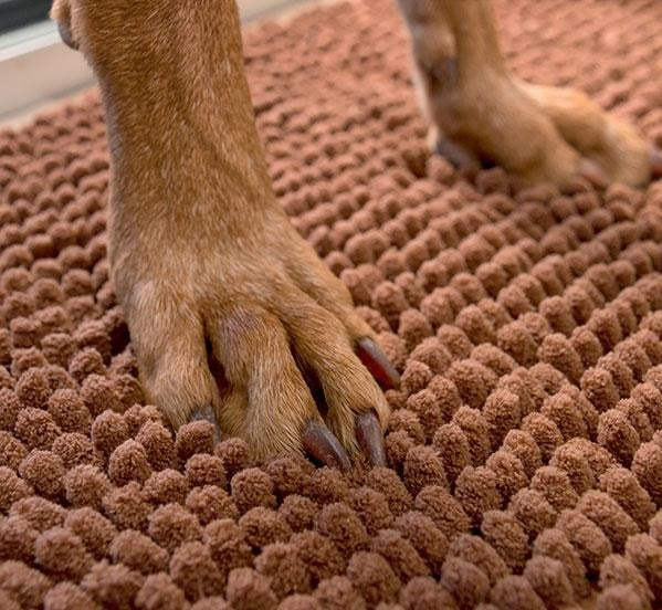 Pet Mat Pet Door Mat - siopashop.ie
