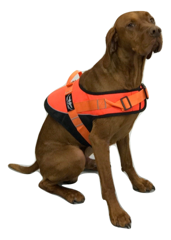 Hunting Dog Orange Hi Viz Safety Jacket/Vest with reflective piping