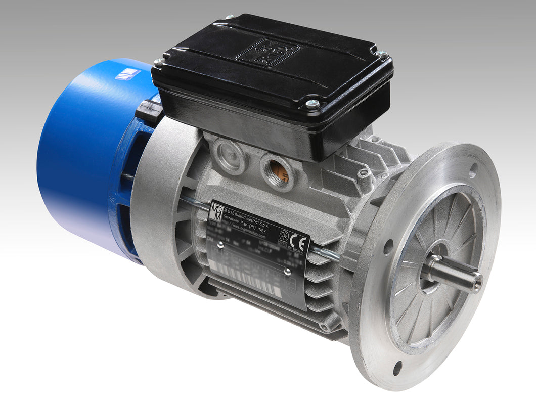 BA 80 D4 MGM Electric Motor - ppdistributors