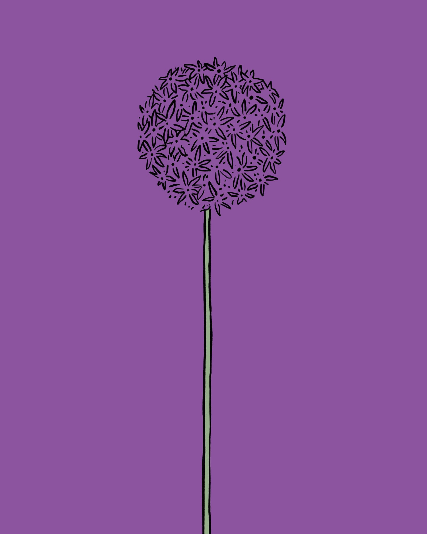 Bloomon_Floroscoop_2020_Allium-1