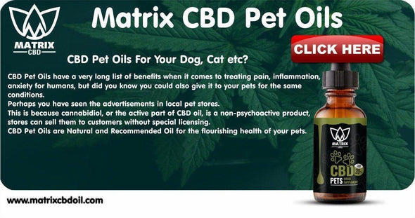 Buy CBD Pet Oils UK-Matrix CBD Oil