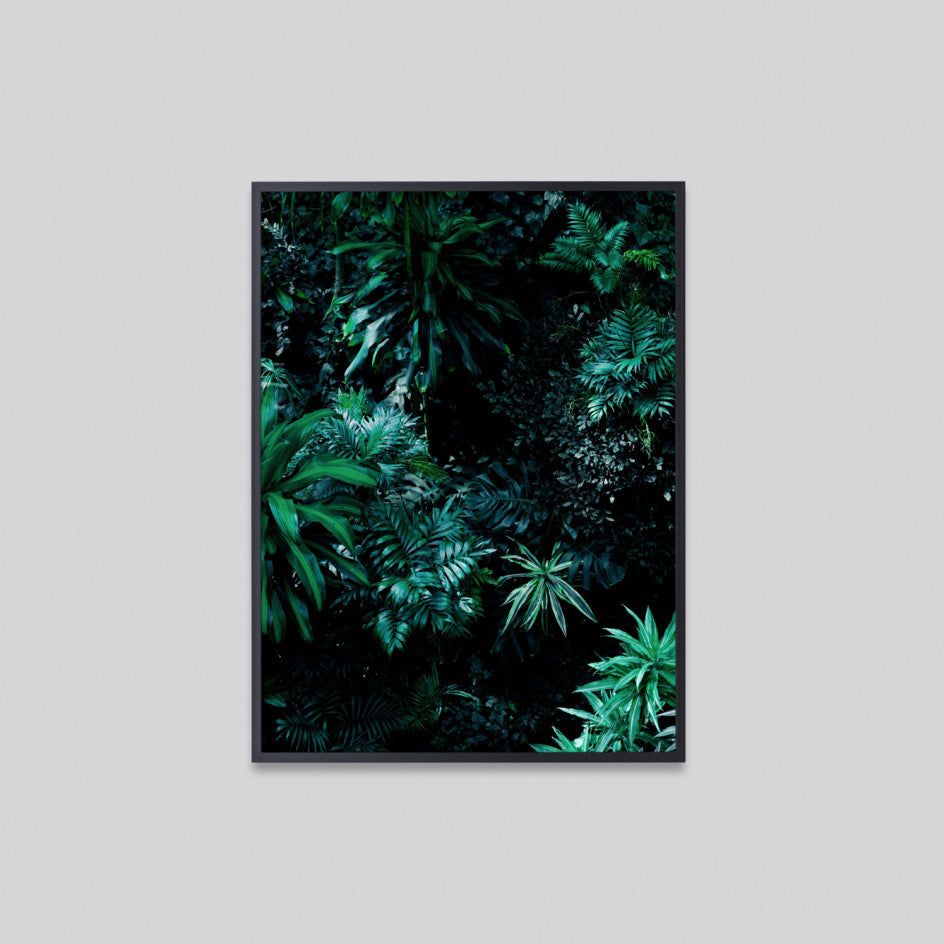 Forest Green 1 Photographic Print