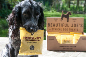 Beautiful Joe's Ethical Dog Treats 50g (Treats only)