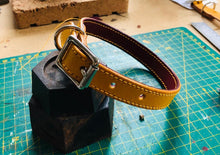 Load image into Gallery viewer, Molleé Luxe Dog Collar - Yellow & Claret