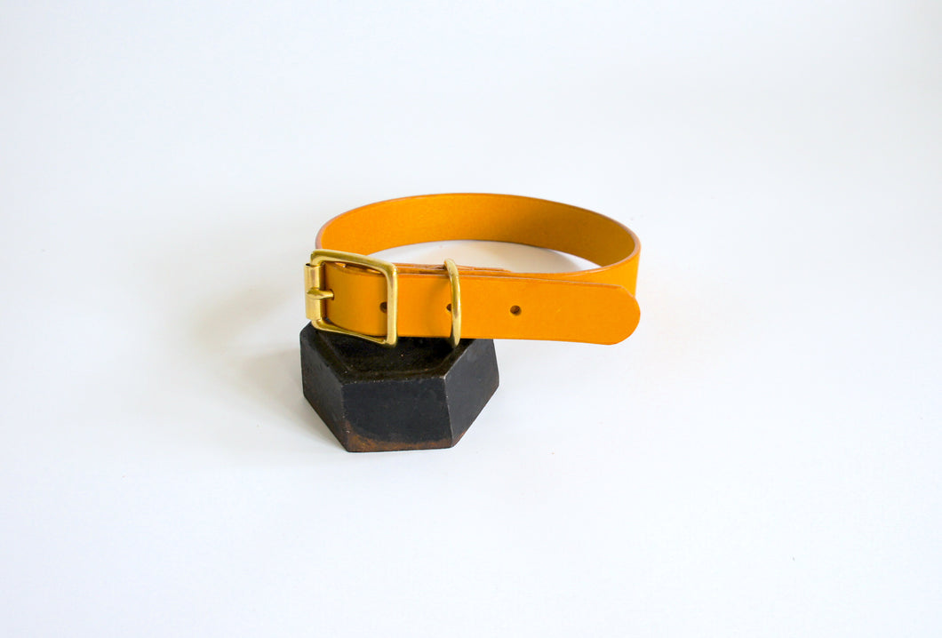Molleé Classic Dog Collar Yellow