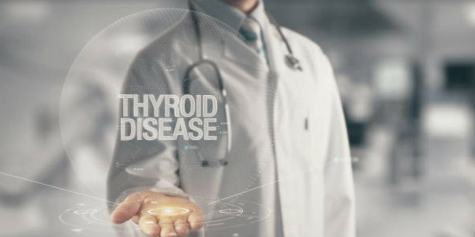 WHAT IS THE THYROID GLAND AND WHAT DOES IT DO?