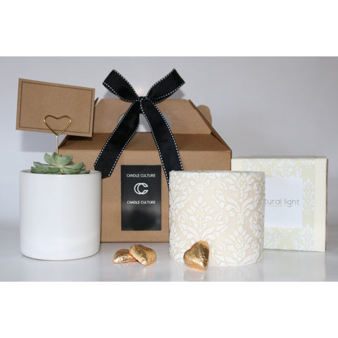 Succulent and Candle Gift Pack (Extra Large)