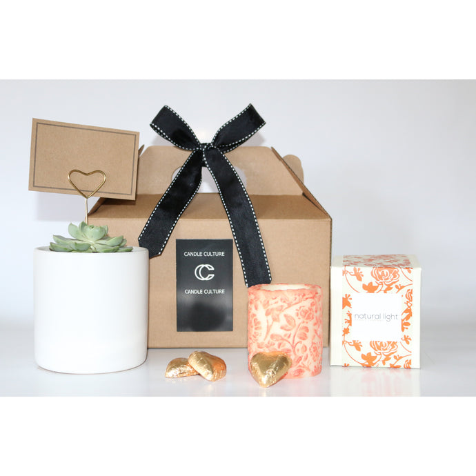 Succulent and Candle Gift Pack (Small)