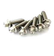 Titanium Front Body Fastener Kit