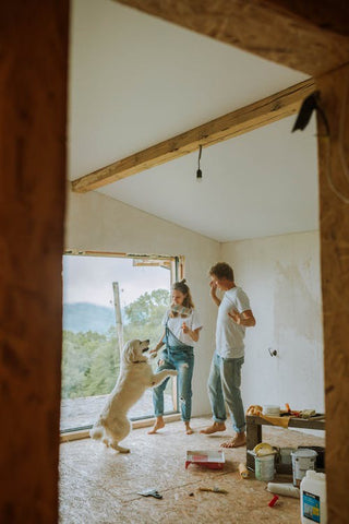 Living Through a Renovation - Family with Dog