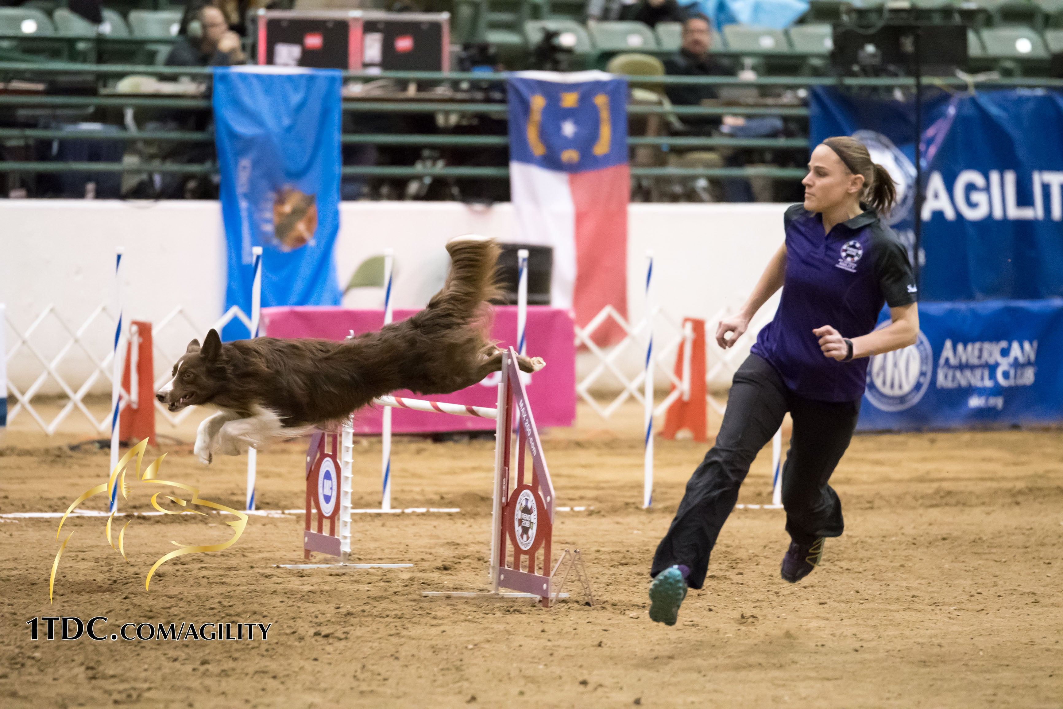 Interview with AKC National Agility Winner Angie Benacquisto