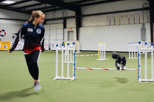 Interview with AKC EOJ Team USA Member Brie Schaff