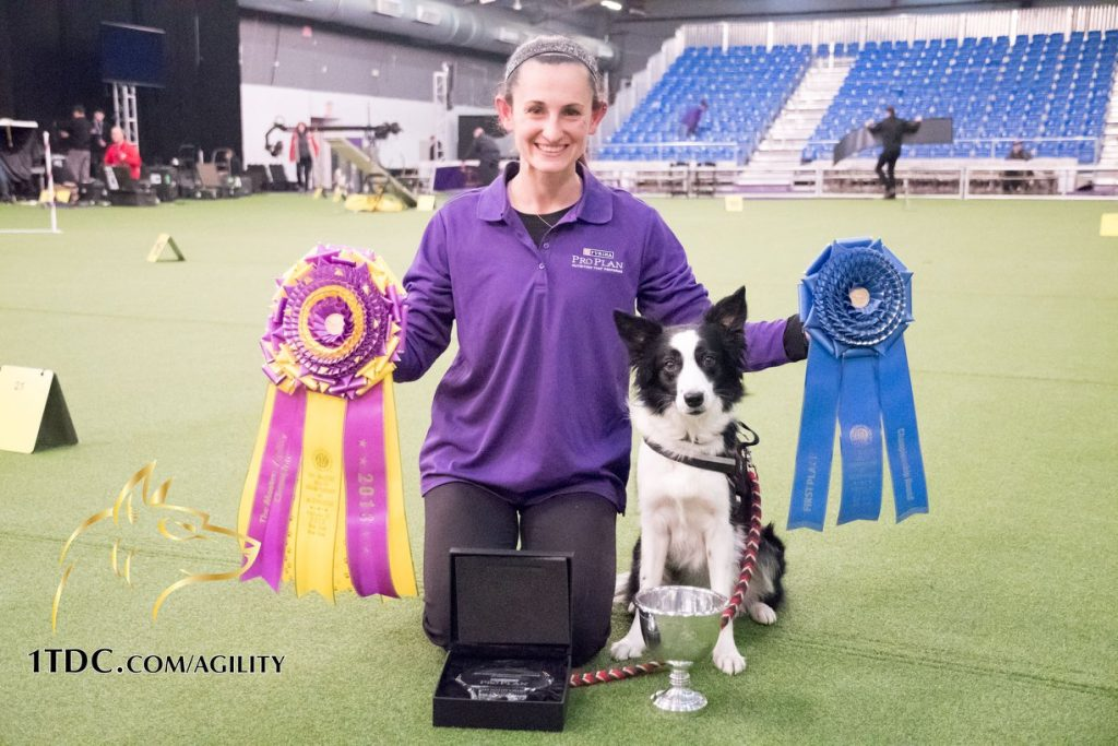 Interview with Westminster Agility Champion Jessica Ajoux and Fame(US)