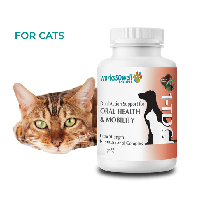 1TDC for Oral Health + Mobility Support for Cats