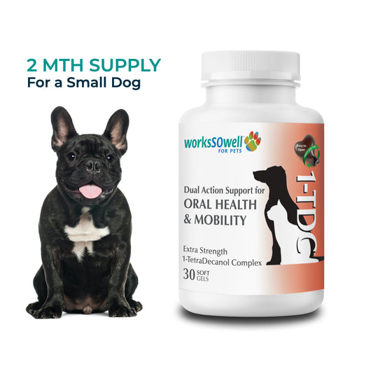 1TDC for Oral Health + Mobility Support for Dogs