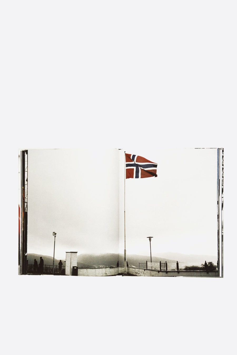 Livre True Norvegian Black Metal by Peter Beste - WASTED PARIS
