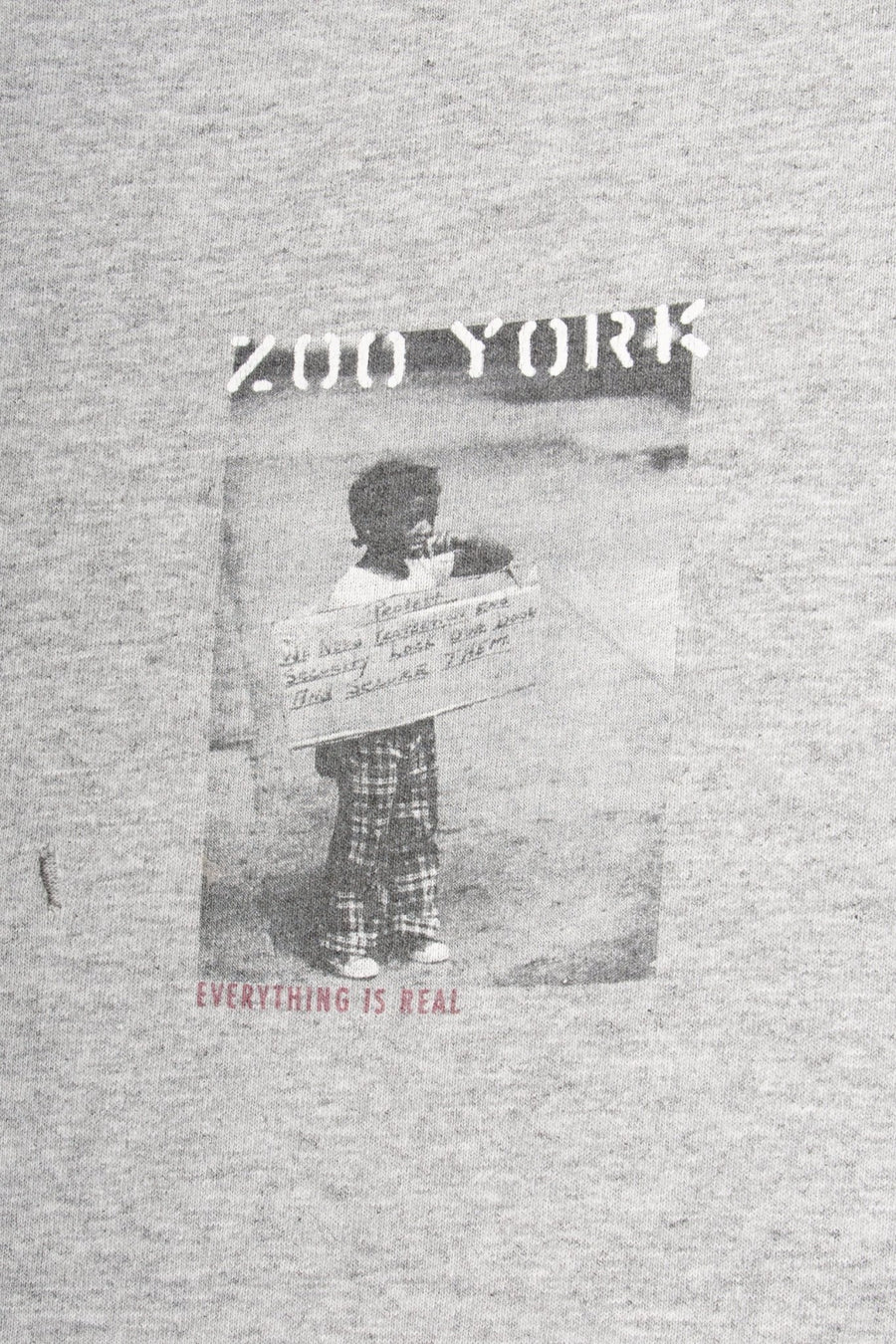 T-shirt Zoo York Everything is Real - WASTED PARIS