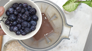 Blueberry Antioxidant and Immunity Boost Protein Smoothie