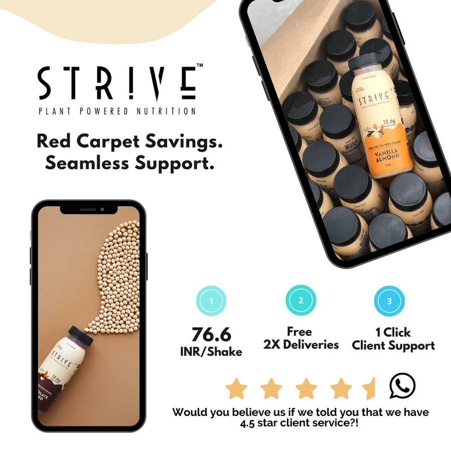 STRIVE - Pack of 60