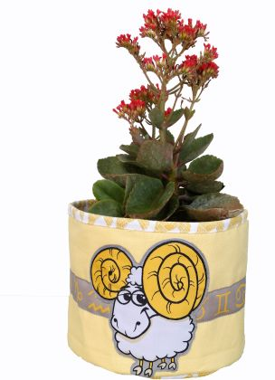 Aries - Planter Bag