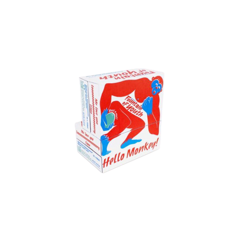 Fountain of Youth(DE)  - Daily Drinking Team, 2 boxes of 24*520ml