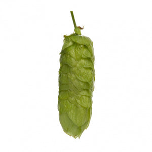 Pacific Gem Hops - Pellet - 50g