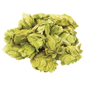 Citra Hops - Flower/Leaf - 100g