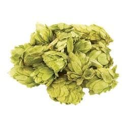 nelson-sauvin-hops-flowerleaf-100g for sale