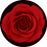 Rosco Red Rose Color Glass Gobo
