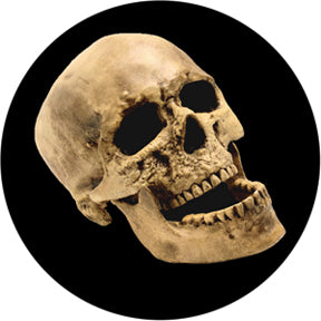 Rosco Laughing Skull Color Glass Gobo