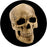 Rosco Yorick Skull Color Glass Gobo