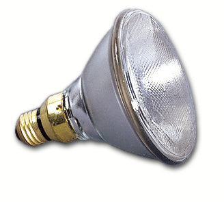 Lamp PAR38 250 Watt Spot, 4200 hr