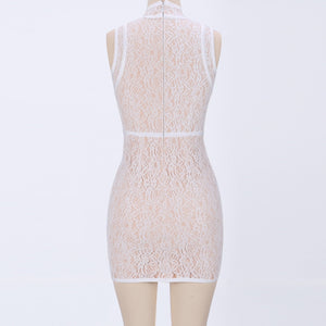 Round Neck Sleeveless Lace Mini Bodycon Dress HJ624 3 in wolddress