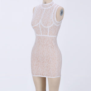 Round Neck Sleeveless Lace Mini Bodycon Dress HJ624 2 in wolddress